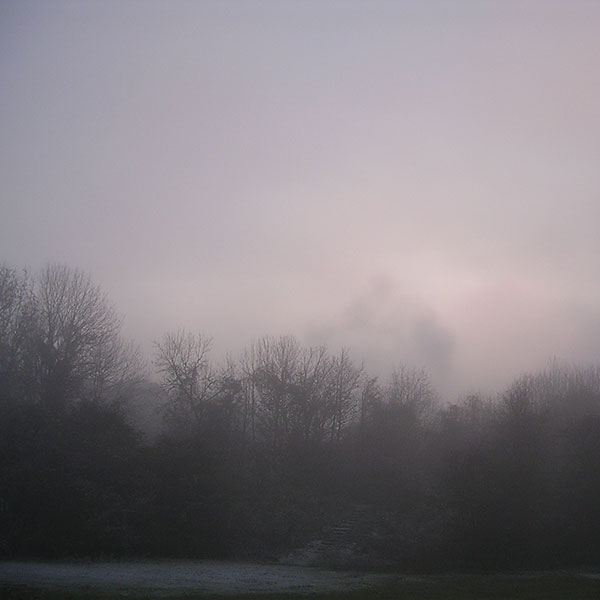 Morning fog atmospheric special effects